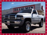 2001 Bright Silver Metallic Dodge Ram 1500 ST Regular Cab 4x4 #8592078