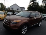 2011 Golden Bronze Metallic Ford Explorer Limited 4WD #86283994