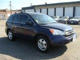 2010 Royal Blue Pearl Honda CR-V LX AWD #86354588
