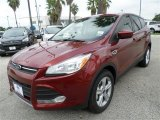 2014 Sunset Ford Escape SE 1.6L EcoBoost #86354039