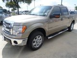 2013 Pale Adobe Metallic Ford F150 XLT SuperCrew #86401306