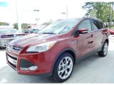 2014 Sunset Ford Escape Titanium 2.0L EcoBoost #86401373
