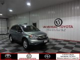 2010 Opal Sage Metallic Honda CR-V EX #86401346