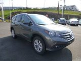 2014 Polished Metal Metallic Honda CR-V EX-L AWD #86451209