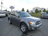 2011 Sterling Grey Metallic Ford Escape Limited V6 4WD #86450816