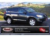 2010 Black Forest Pearl Toyota RAV4 I4 4WD #86450481
