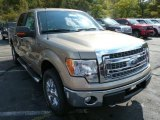 2013 Pale Adobe Metallic Ford F150 XLT SuperCrew 4x4 #86505195