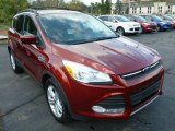 2014 Sunset Ford Escape SE 1.6L EcoBoost 4WD #86505193
