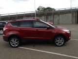 2014 Sunset Ford Escape SE 2.0L EcoBoost 4WD #86530595