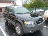 2006 Black Ford Escape XLT V6 #86530877