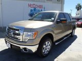 2013 Pale Adobe Metallic Ford F150 XLT SuperCrew #86558874