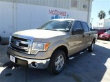 2013 Pale Adobe Metallic Ford F150 XLT SuperCrew #86558873