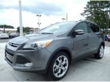 2014 Sterling Gray Ford Escape Titanium 1.6L EcoBoost #86558959