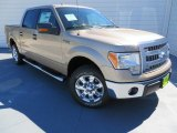 2013 Pale Adobe Metallic Ford F150 XLT SuperCrew #86559113