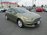 2013 Ginger Ale Metallic Ford Fusion SE 1.6 EcoBoost #86615850