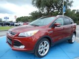 2014 Sunset Ford Escape Titanium 1.6L EcoBoost #86615450