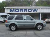 2006 Titanium Green Metallic Ford Escape Hybrid 4WD #8652774