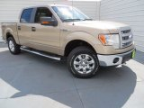 2013 Pale Adobe Metallic Ford F150 XLT SuperCrew 4x4 #86725094