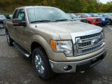 2013 Pale Adobe Metallic Ford F150 XLT SuperCab 4x4 #86779964