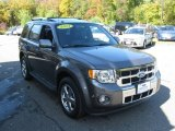 2011 Sterling Grey Metallic Ford Escape Limited V6 4WD #86812398