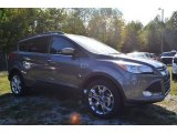 2014 Sterling Gray Ford Escape SE 1.6L EcoBoost #86848875