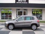 2011 Alpine Gray Metallic Volkswagen Tiguan SE #86848986