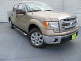 2013 Pale Adobe Metallic Ford F150 XLT SuperCrew #86892390