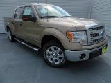 2013 Pale Adobe Metallic Ford F150 XLT SuperCrew #86892389