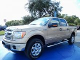 2013 Pale Adobe Metallic Ford F150 XLT SuperCrew 4x4 #86937446