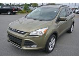 2013 Ginger Ale Metallic Ford Escape SE 1.6L EcoBoost 4WD #86937798