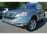 2011 Opal Sage Metallic Honda CR-V EX-L 4WD #86980968