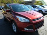 2014 Sunset Ford Escape SE 1.6L EcoBoost 4WD #87057089