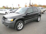 2006 Black Ford Escape XLT V6 4WD #87057569