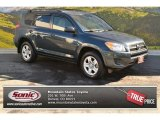 2010 Black Forest Pearl Toyota RAV4 I4 4WD #87056549