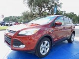 2014 Sunset Ford Escape SE 2.0L EcoBoost #87056996