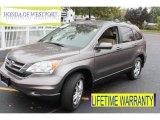 2010 Urban Titanium Metallic Honda CR-V EX-L AWD #87056952