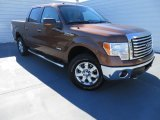 2012 Golden Bronze Metallic Ford F150 XLT SuperCrew 4x4 #87057464