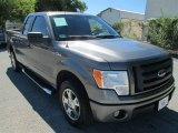 2010 Sterling Grey Metallic Ford F150 STX SuperCab #87056899