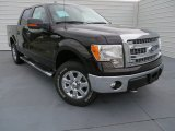 2013 Kodiak Brown Metallic Ford F150 XLT SuperCrew 4x4 #87057425