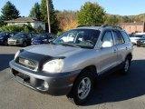 2003 Pewter Hyundai Santa Fe GLS #87058133