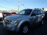 2009 Brilliant Silver Metallic Ford Escape XLT #87058132