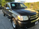 2005 Black Toyota Tundra SR5 Double Cab #87182478
