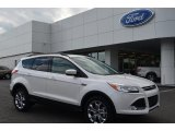 2014 White Platinum Ford Escape SE 2.0L EcoBoost #87182546