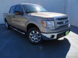 2013 Pale Adobe Metallic Ford F150 XLT SuperCrew #87225071