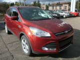 2014 Sunset Ford Escape SE 1.6L EcoBoost 4WD #87274533