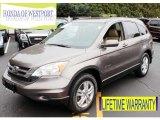 2010 Urban Titanium Metallic Honda CR-V EX-L AWD #87274517