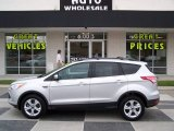 2013 Ingot Silver Metallic Ford Escape SE 2.0L EcoBoost #87307834