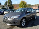 2014 Sterling Gray Ford Focus SE Sedan #87307982