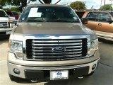 2012 Golden Bronze Metallic Ford F150 XLT SuperCrew 4x4 #87341824