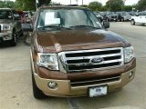 2011 Golden Bronze Metallic Ford Expedition XLT #87341822